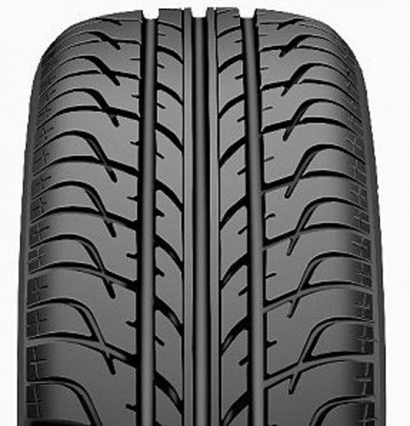 Taurus High Performance 401 205/55 R16 91V